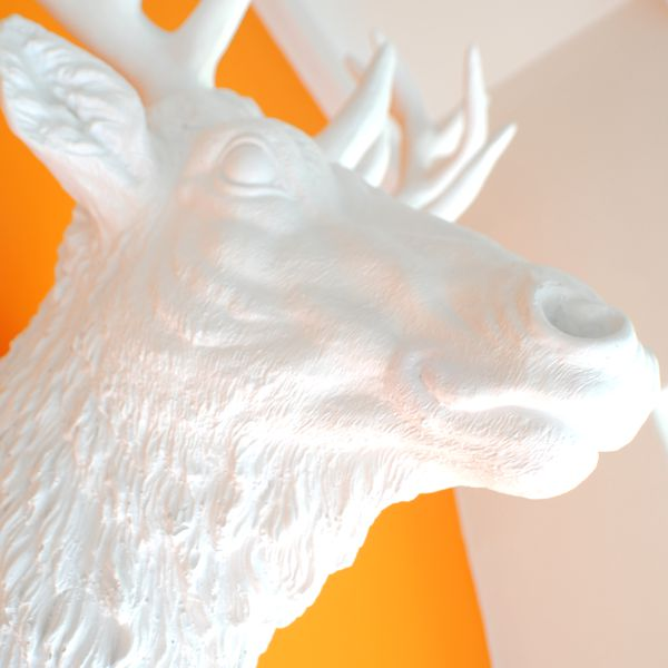 close up of large Modern White resin Stag Wall Trophy Head on orange wall